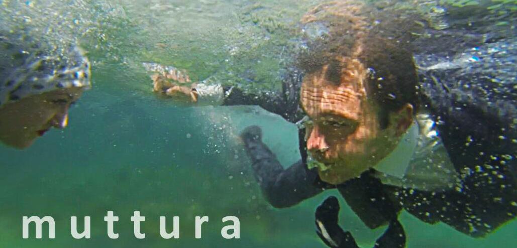"""""""muttura"""" ad Alezio giovedì 24 Gennaio"""